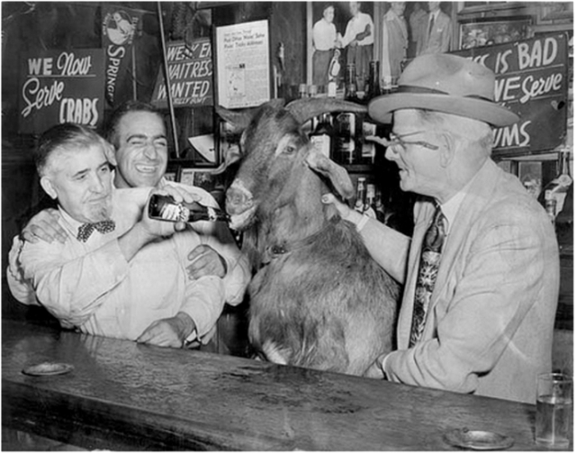 billy-goat-tavern